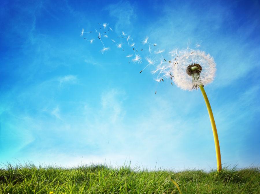 Cum puteți economisi bani prin prevenirea curenților de aer din apartament?
